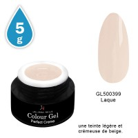 Gel Couleur Perfect Creme5 grs