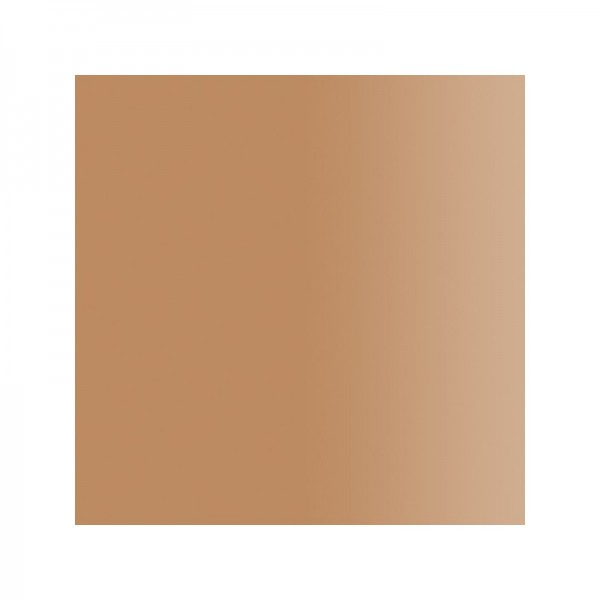 ST04 Brow Grey Stop Anti-Oxydant Airless Color Biotic Phocéa