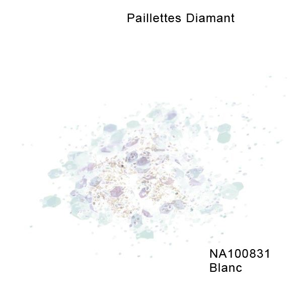 NA100831 Blanc